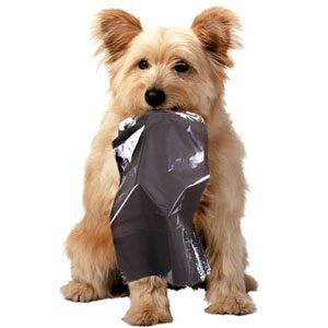 dog-with-poo-bag
