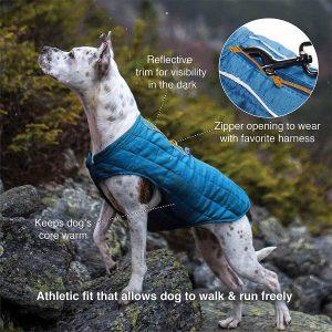 Kurgo Loft Dog Coat