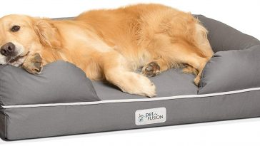 best waterproof dog beds