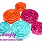 slow feeding bowl review