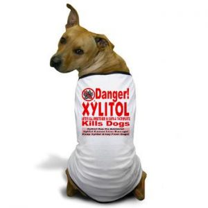 xylitol kills dogs
